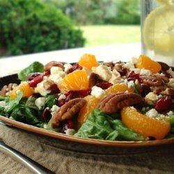 Cranberries and Chicken Salad