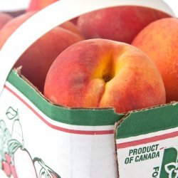 Sour Cream Peach Muffins