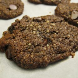 Double Chocolate Mocha Cookies (Gluten-Free and Vegan!)