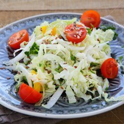 Fresh Chinese Cabbage Salad