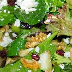 Apple-Cranberry Salad recipe