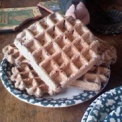 Sourdough Buckwheat Waffles