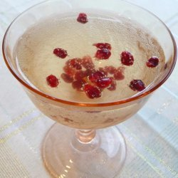 Pomegranate Cranberry Champagne Cocktail recipe