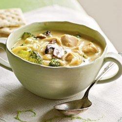 Broccoli & Chicken Noodle Soup