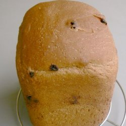 Chocoholics Deeply Delicious Dark Chocolate Raisin Loaf (Abm)