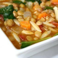 Garden Orzo Soup