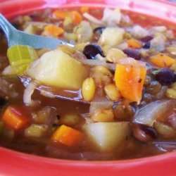Easy Tasty Hearty Lentil Black Bean Stew