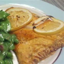 Salmon with Harissa
