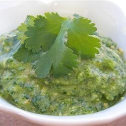 Cilantro Chili-Lime Cashew Pesto