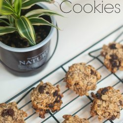 Oatmeal Cookies (Without the Sugar)