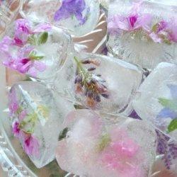 Fresh Flower/Herb Blossom Ice Cubes for Summertime Entertaining recipe