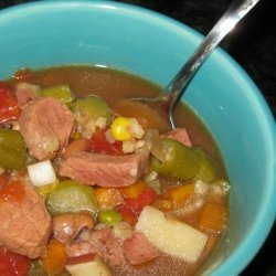 Quick Beef Vegetable Soup