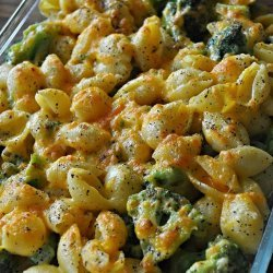 Cheesy Baked Shells and Broccoli