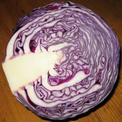 10 in 10 Diet Cabbage Soup