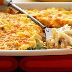 Tuna Mornay With Macaroni