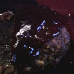 Savory Venison Meatloaf