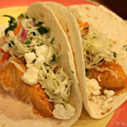 Fish Tacos With Cilantro Chipotle Slaw