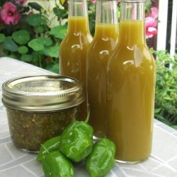 Fermented Hot Chili Sauce