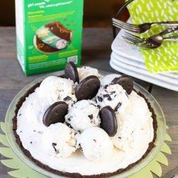 Mint Chocolate Chip Ice Cream Pie