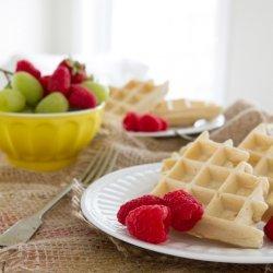 Gluten-Free Sugar-Free Waffles
