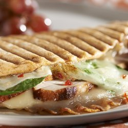 Turkey Paninis