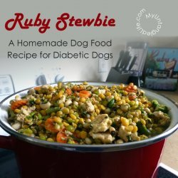 Dog Food recipe