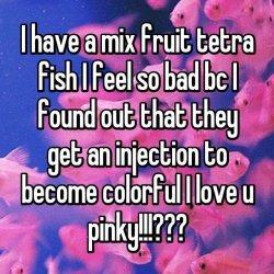 Less Fishy Fish