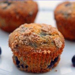 Blueberry Wheat Muffins