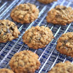 Chocolate Peanut Butter Banana Oatmeal Cookies
