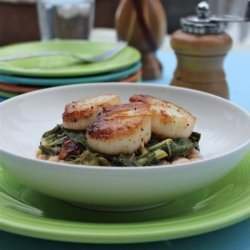 Seared Scallops With Wilted Chard