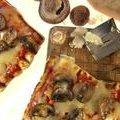 Grilled Mixed Mushroom Pizza (Melissa  d'Arabian)