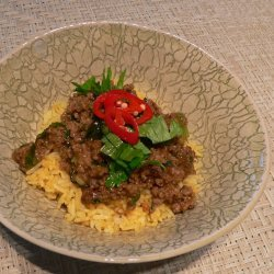 Curried Mince and Rice