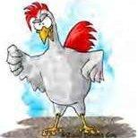 Bbq Chicken In Crockpot recipe