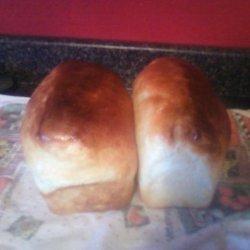Blue Ribbon White Bread recipe