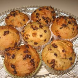 Pumkin Yogurt Chocolate Chip Muffins