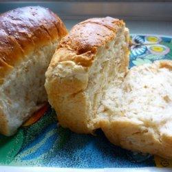 Custard Fluffy Bread recipe