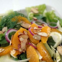 Tangerine With Fennel Salad