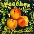 Southern Peach Lasagna