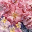 Candied Flower Petals