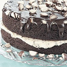 Chocolate Malt Cake  With Fudge Glaze