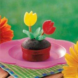 Flowerpot Cupcakes recipe