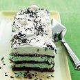 Chocolate Meringue And Mint Chip Ice Cream Cake Re...