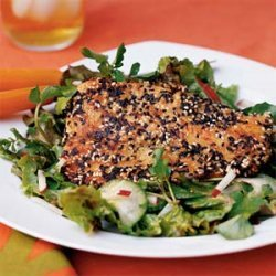 Sesame-crusted Mahi Mahi with Cucumber-Watercress Salad