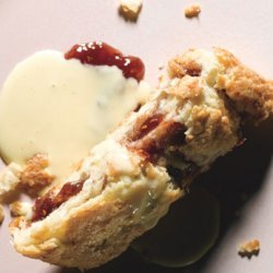 Rhubarb and Raspberry Jam Roly-Poly with Vanilla Custard Sauce