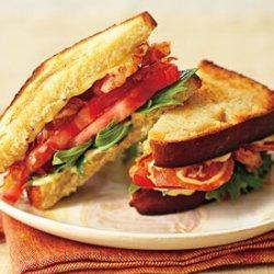 Pancetta, Mizuna, and Tomato Sandwiches with Green Garlic Aïoli recipe