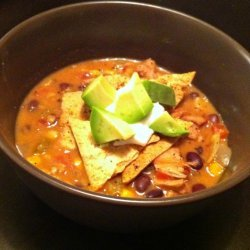 Duck Tortilla Soup