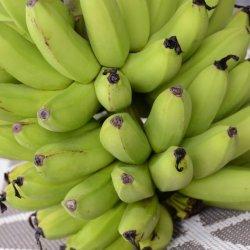 Hurricane Bananas