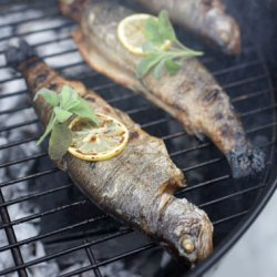Vine-Smoked Trout