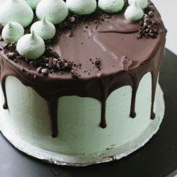 Chocolate Meringue and Mint Chip Ice Cream Cake