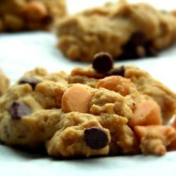Easy Peanut Butter & Chocolate Chip Cookies